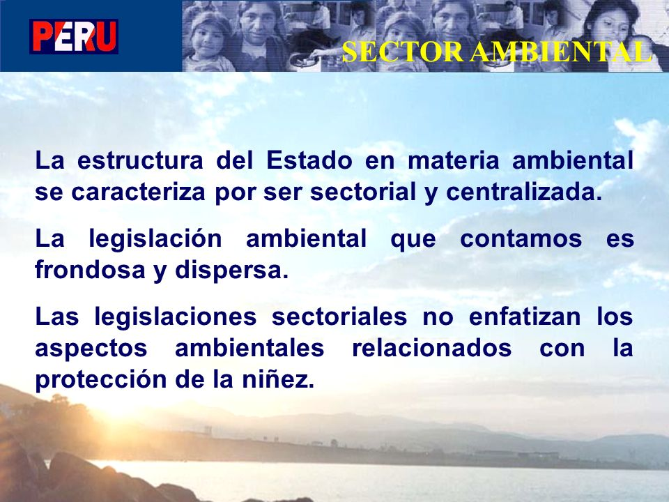 SECTOR AMBIENTAL La estructura del Estado en materia ambiental se caracteriza por ser sectorial y centralizada. La legislación ambiental que contamos