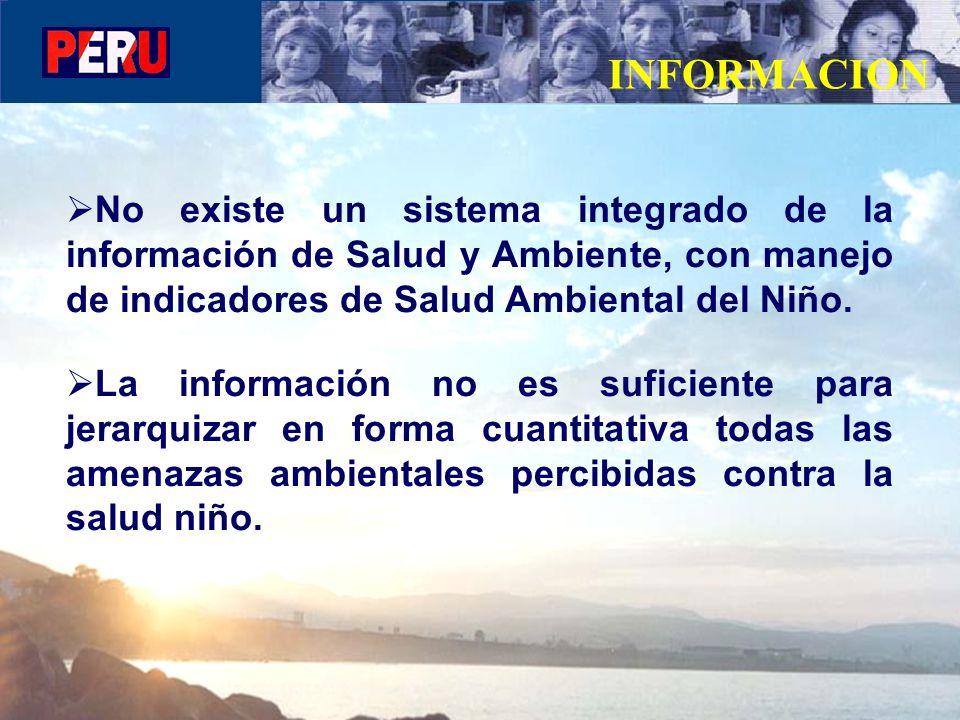 No existe un sistema integrado de la información de Salud y Ambiente, con manejo de indicadores de Salud Ambiental del Niño. La información no es sufi