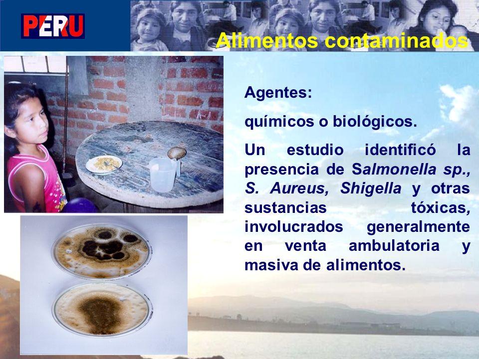 Agentes: químicos o biológicos. Un estudio identificó la presencia de Salmonella sp., S. Aureus, Shigella y otras sustancias tóxicas, involucrados gen