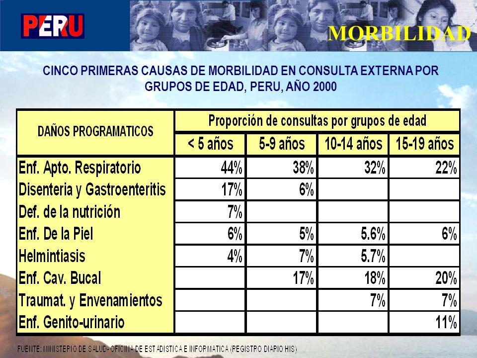 MORBILIDAD CINCO PRIMERAS CAUSAS DE MORBILIDAD EN CONSULTA EXTERNA POR GRUPOS DE EDAD, PERU, AÑO 2000