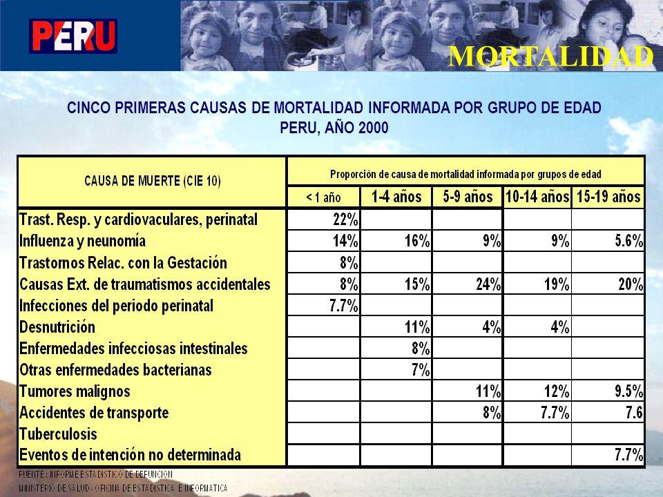 MORTALIDAD CINCO PRIMERAS CAUSAS DE MORTALIDAD INFORMADA POR GRUPO DE EDAD PERU, AÑO 2000