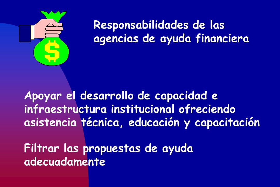 Responsabilidades de las agencias de ayuda financiera Apoyar el desarrollo de capacidad e infraestructura institucional ofreciendo asistencia técnica,