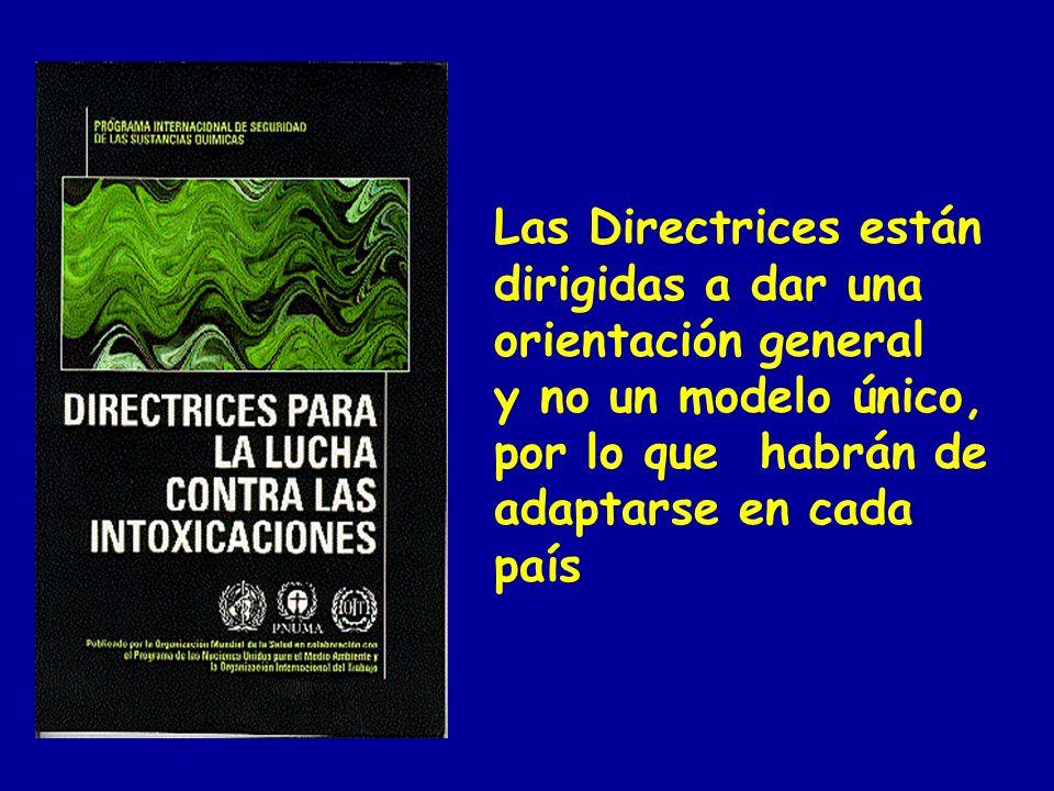 Las Directrices están dirigidas a dar una orientación general y no un modelo único, por lo que habrán de adaptarse en cada país