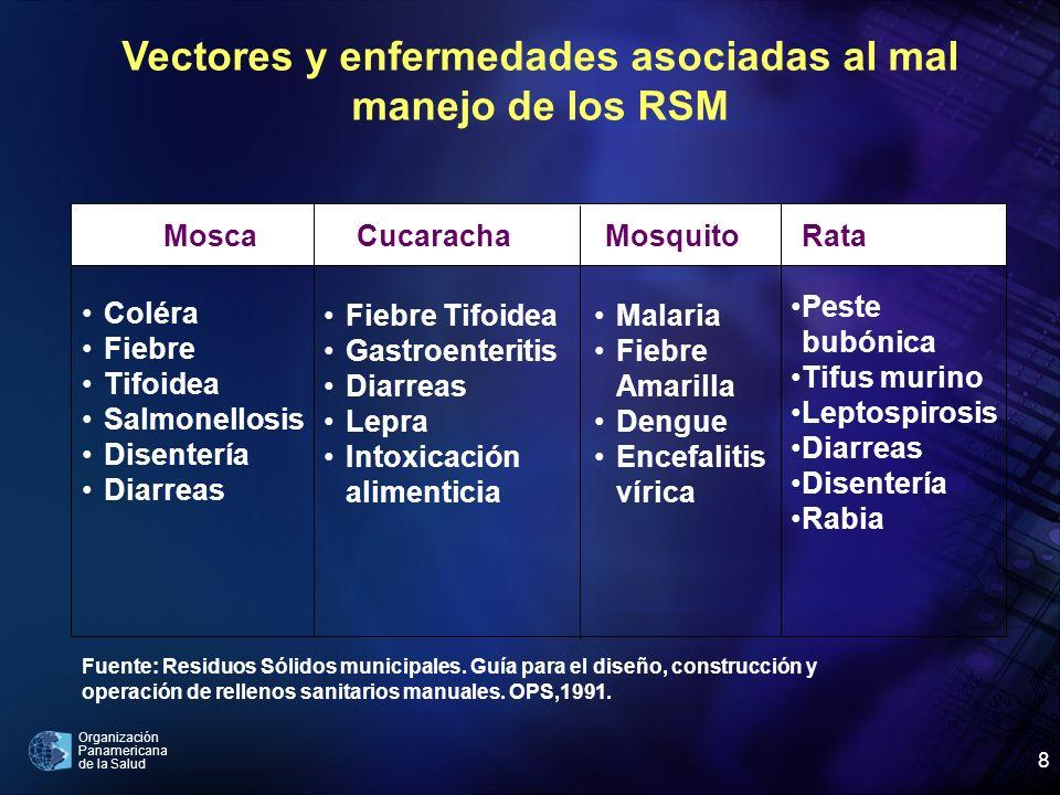 Organización Panamericana de la Salud 8 Vectores y enfermedades asociadas al mal manejo de los RSM Mosca Coléra Fiebre Tifoidea Salmonellosis Disenter
