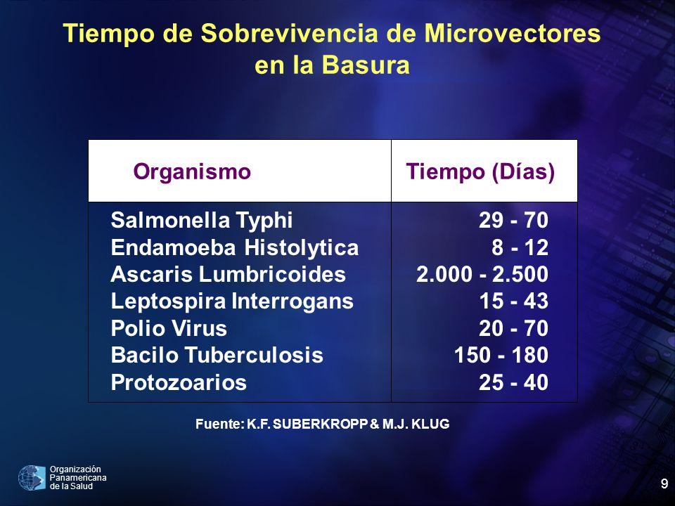 Organización Panamericana de la Salud 9 Tiempo de Sobrevivencia de Microvectores en la Basura OrganismoTiempo (Días) Salmonella Typhi Endamoeba Histol