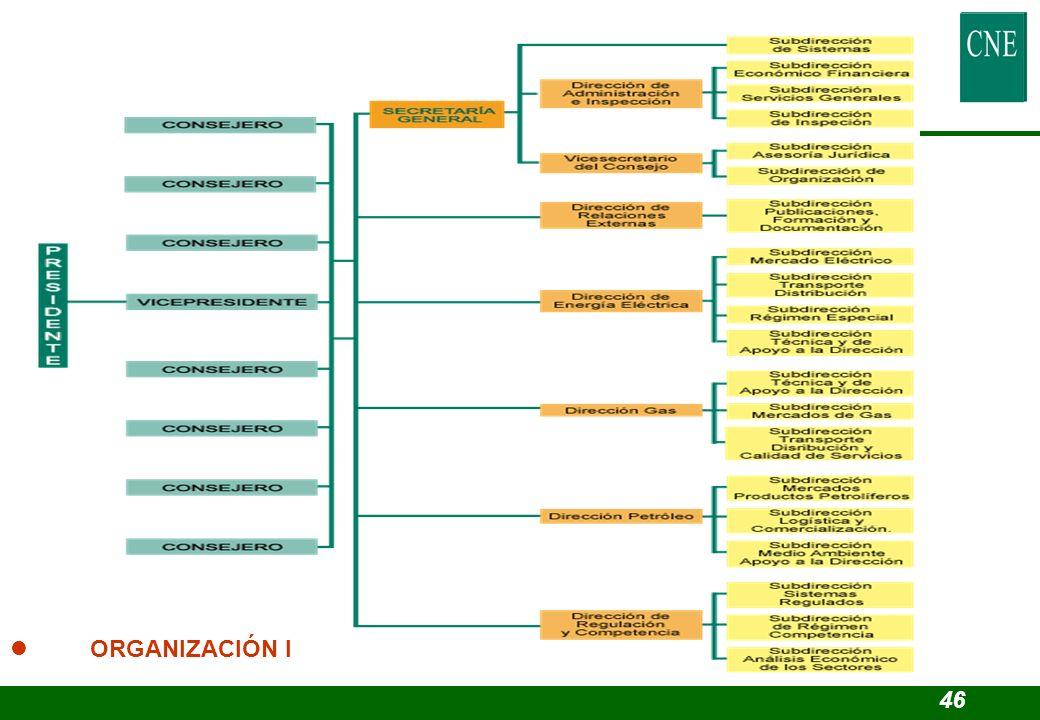 3.4. Estructura y Organización. l ORGANIZACIÓN I 46