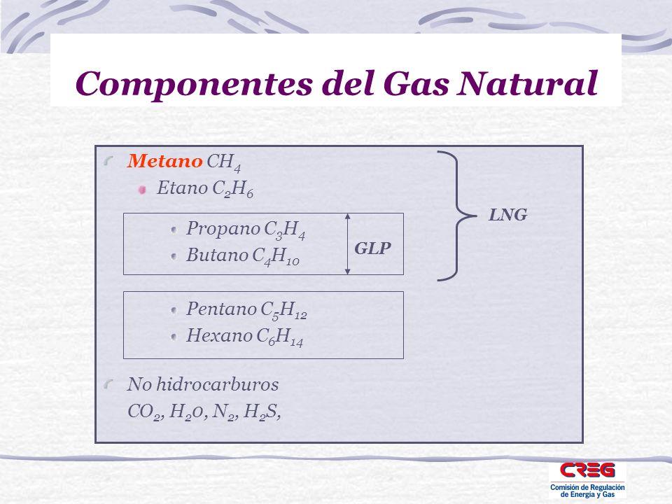 Componentes del Gas Natural Metano CH 4 Etano C 2 H 6 Propano C 3 H 4 Butano C 4 H 10 Pentano C 5 H 12 Hexano C 6 H 14 No hidrocarburos CO 2, H 2 0, N