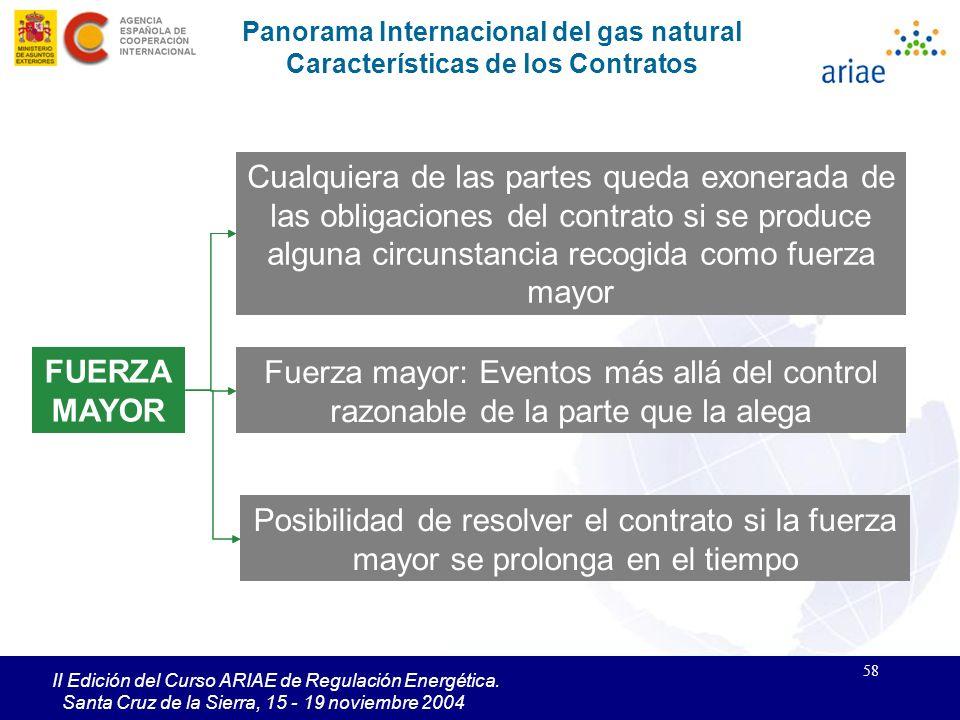 58 II Edición del Curso ARIAE de Regulación Energética. Santa Cruz de la Sierra, 15 - 19 noviembre 2004 FUERZA MAYOR Fuerza mayor: Eventos más allá de