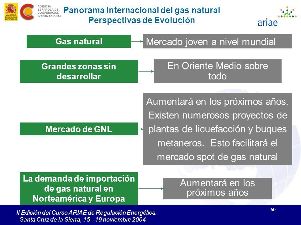 60 II Edición del Curso ARIAE de Regulación Energética. Santa Cruz de la Sierra, 15 - 19 noviembre 2004 En Oriente Medio sobre todo Grandes zonas sin