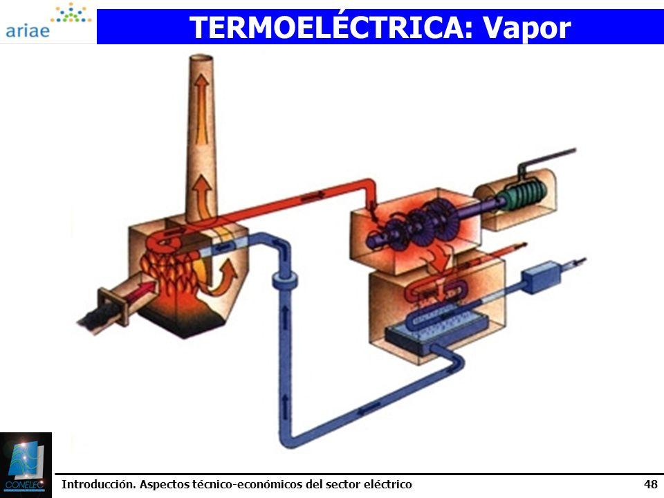 Introducción. Aspectos técnico-económicos del sector eléctrico48 TERMOELÉCTRICA: Vapor