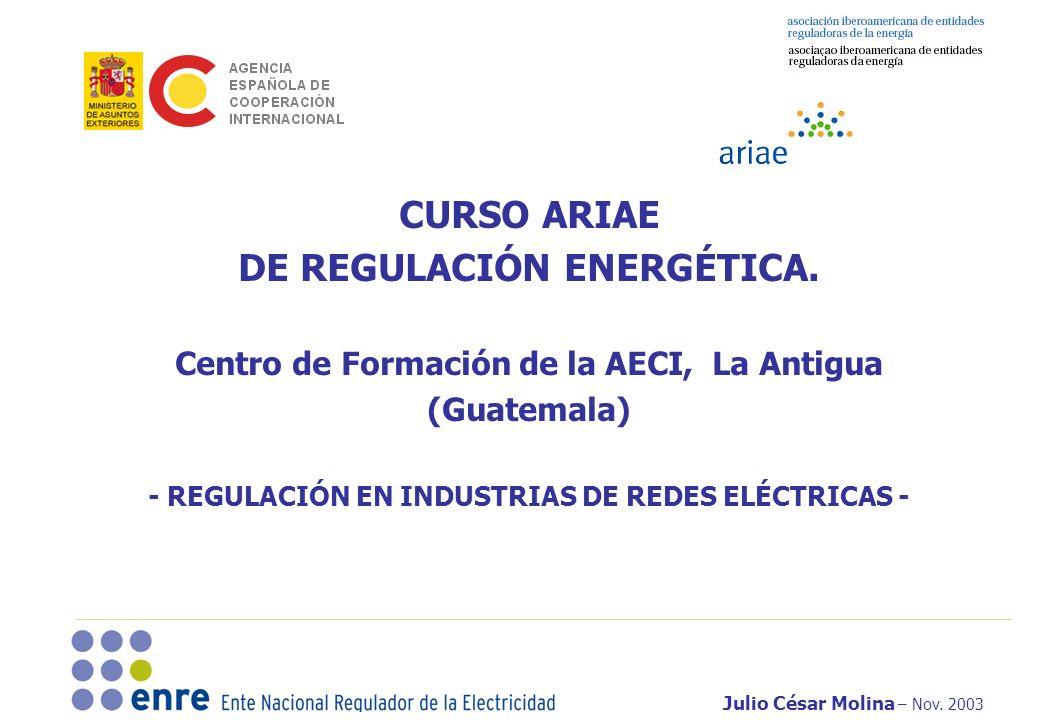 Julio César Molina – Nov. 2003 CURSO ARIAE DE REGULACIÓN ENERGÉTICA. Centro de Formación de la AECI, La Antigua (Guatemala) - REGULACIÓN EN INDUSTRIAS