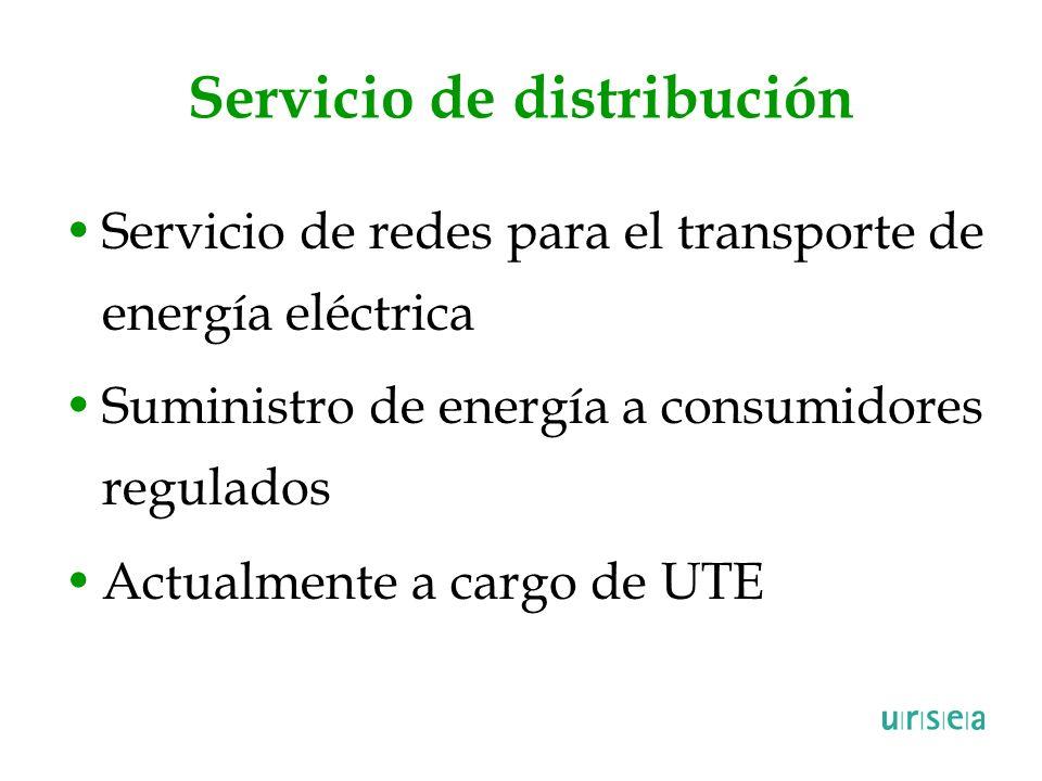 Servicio de distribución Servicio de redes para el transporte de energía eléctrica Suministro de energía a consumidores regulados Actualmente a cargo