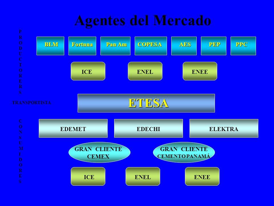 Agentes del Mercado BLM ETESA EDEMET Fortuna Pan Am COPESAAES EDECHIELEKTRA GRAN CLIENTE CEMEX PEP ICE CONSUMIDORESCONSUMIDORES PRODUCTORERSPRODUCTORE