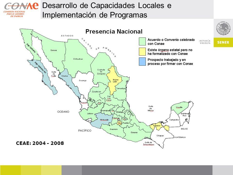 Desarrollo de Capacidades Locales e Implementación de Programas CEAE: 2004 - 2008