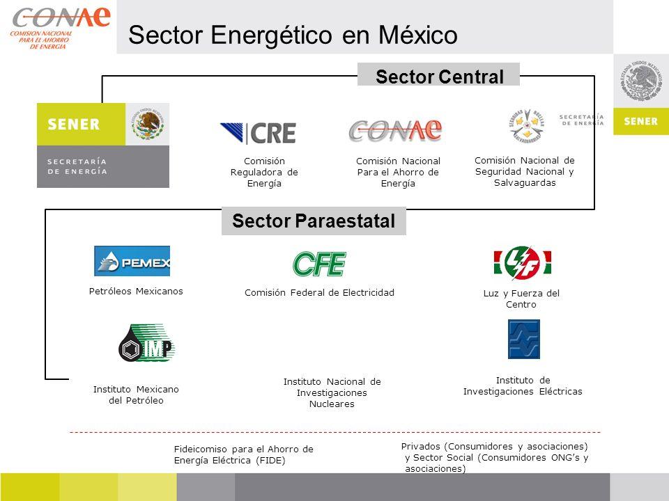 Comisión Nacional de Seguridad Nacional y Salvaguardas Comisión Nacional Para el Ahorro de Energía Comisión Reguladora de Energía Instituto de Investi