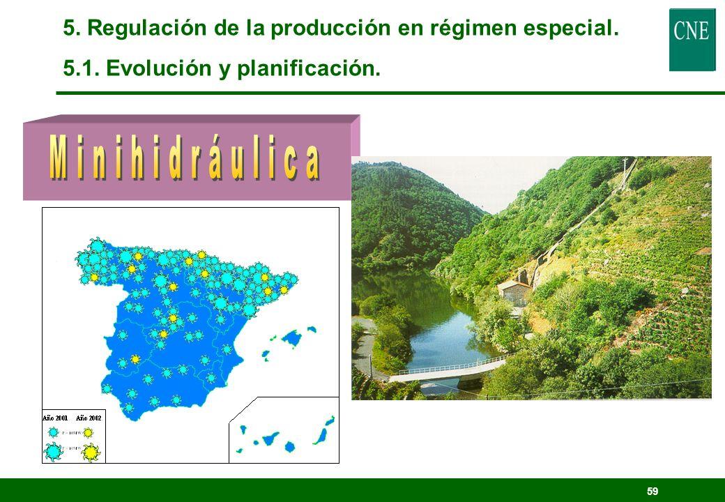 58 5. Regulación de la producción en régimen especial. 5.1. Evolución y planificación.