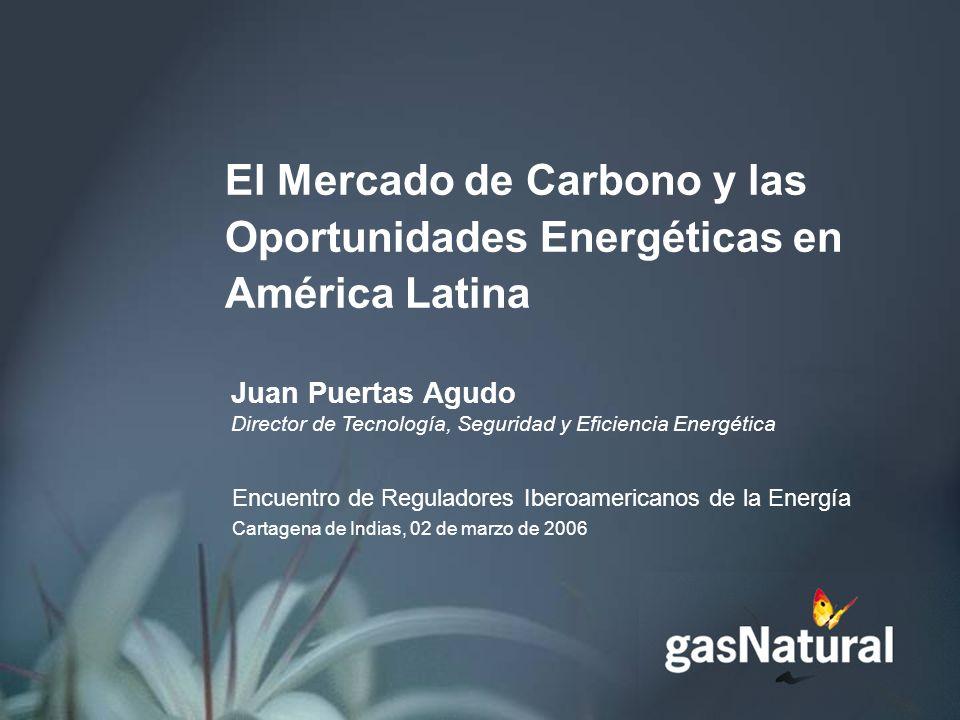 El Mercado de Carbono y las Oportunidades Energéticas en América Latina Juan Puertas Agudo Director de Tecnología, Seguridad y Eficiencia Energética Encuentro de Reguladores Iberoamericanos de la Energía Cartagena de Indias, 02 de marzo de 2006