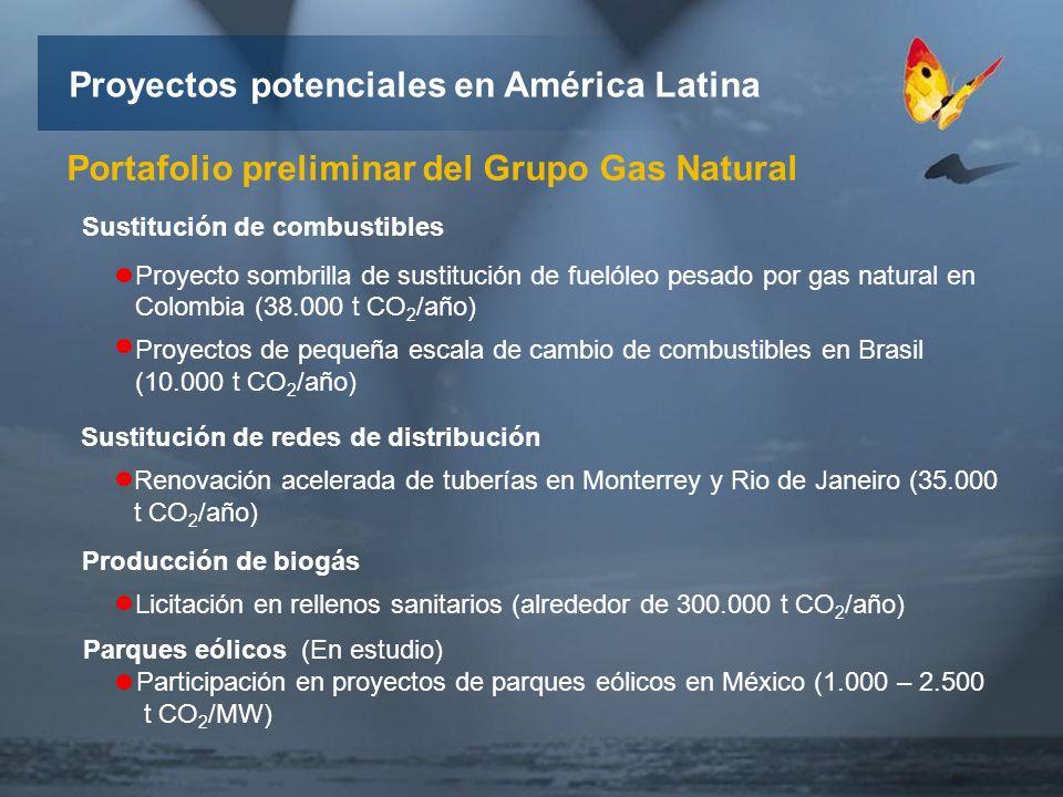 Portafolio preliminar del Grupo Gas Natural Proyectos potenciales en América Latina Sustitución de combustibles Proyecto sombrilla de sustitución de fuelóleo pesado por gas natural en Colombia (38.000 t CO 2 /año) Proyectos de pequeña escala de cambio de combustibles en Brasil (10.000 t CO 2 /año) Sustitución de redes de distribución Renovación acelerada de tuberías en Monterrey y Rio de Janeiro (35.000 t CO 2 /año) Producción de biogás Licitación en rellenos sanitarios (alrededor de 300.000 t CO 2 /año) Parques eólicos (En estudio) Participación en proyectos de parques eólicos en México (1.000 – 2.500 t CO 2 /MW)