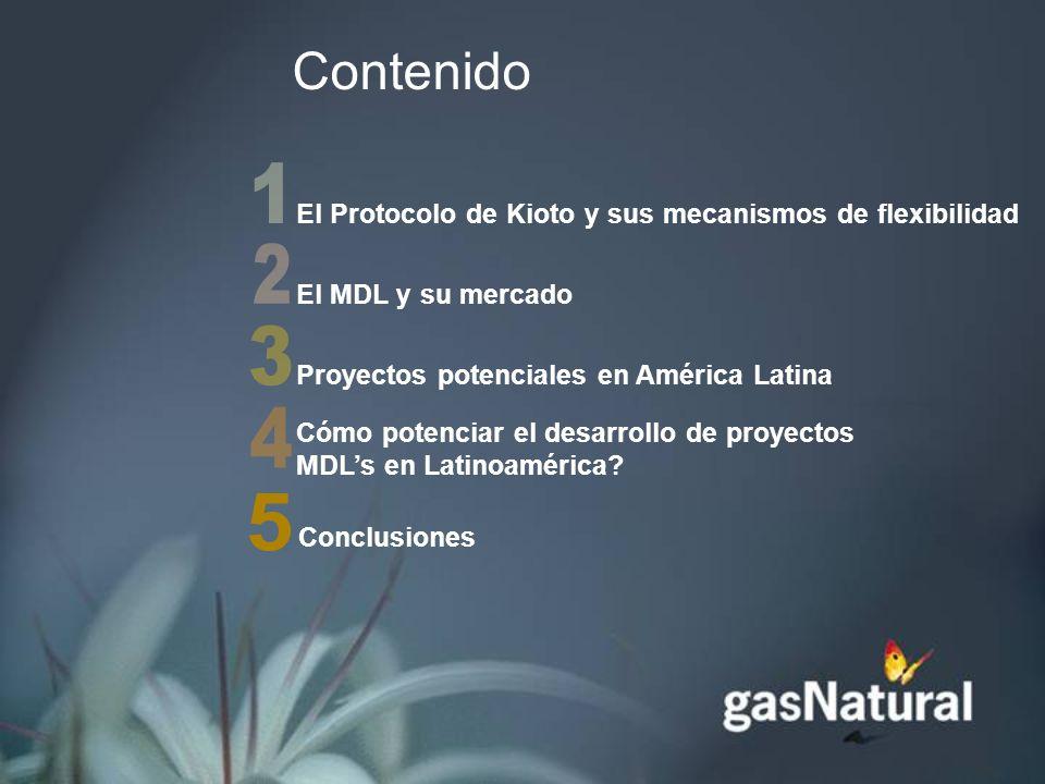 El Protocolo de Kioto y sus mecanismos de flexibilidad El MDL y su mercado Proyectos potenciales en América Latina Cómo potenciar el desarrollo de proyectos MDLs en Latinoamérica.