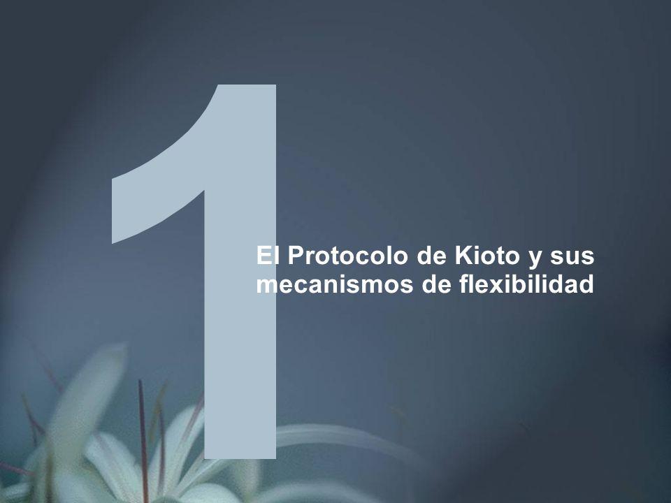 El Protocolo de Kioto y sus mecanismos de flexibilidad