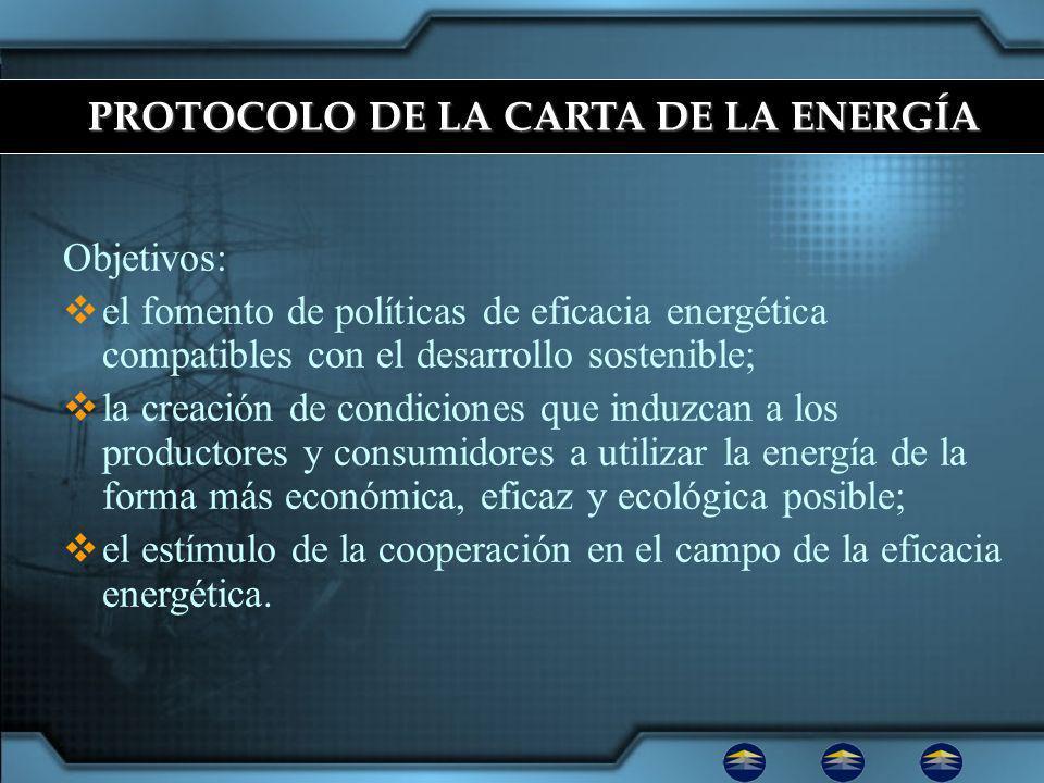 Objetivos: el fomento de políticas de eficacia energética compatibles con el desarrollo sostenible; la creación de condiciones que induzcan a los productores y consumidores a utilizar la energía de la forma más económica, eficaz y ecológica posible; el estímulo de la cooperación en el campo de la eficacia energética.