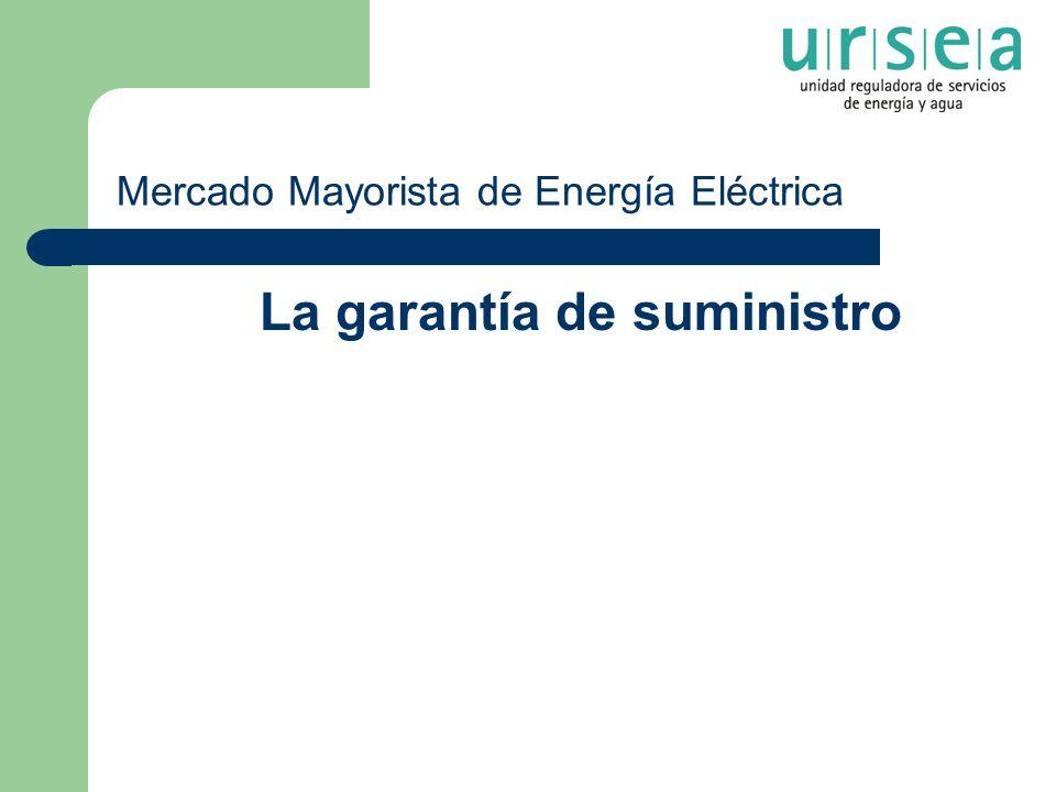 Mercado Mayorista de Energía Eléctrica La garantía de suministro