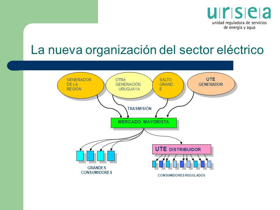 La nueva organización del sector eléctrico MERCADO MAYORISTA GENERADOR DE LA REGIÓN GENERADOR DE LA REGIÓN OTRA GENERACIÓN URUGUAYA OTRA GENERACIÓN UR