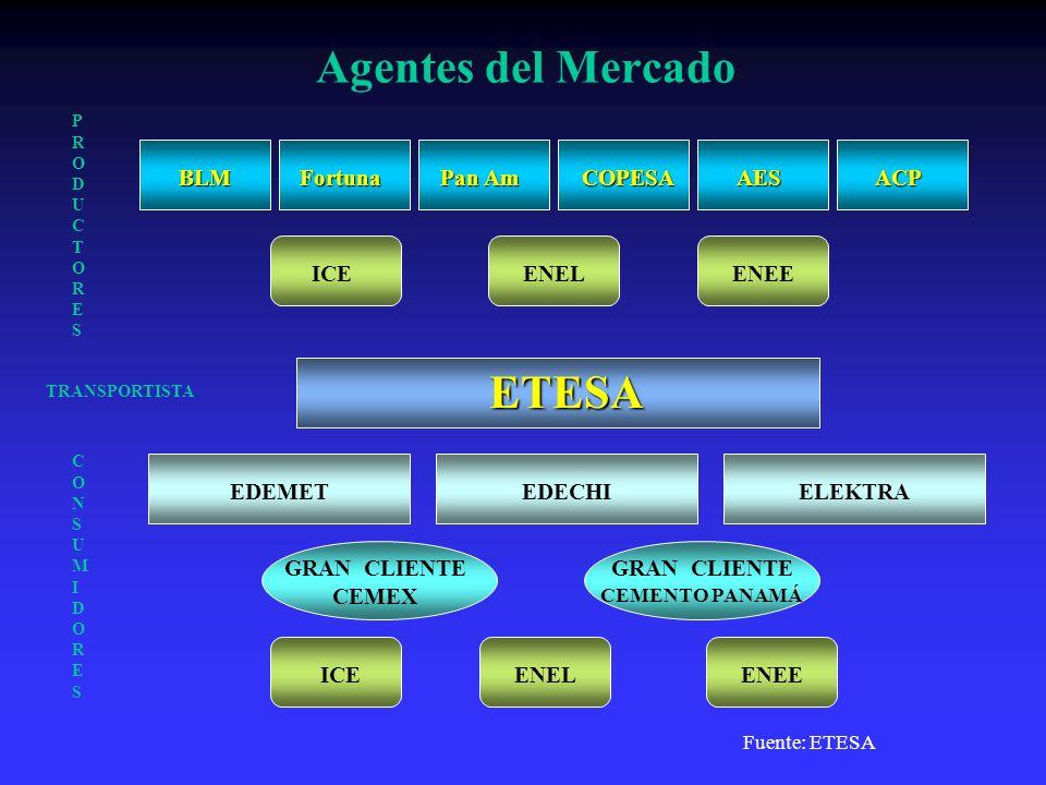 Agentes del Mercado BLM ETESA EDEMET Fortuna Pan Am COPESAAES EDECHIELEKTRA GRAN CLIENTE CEMEX ACP ICE CONSUMIDORESCONSUMIDORES PRODUCTORESPRODUCTORES