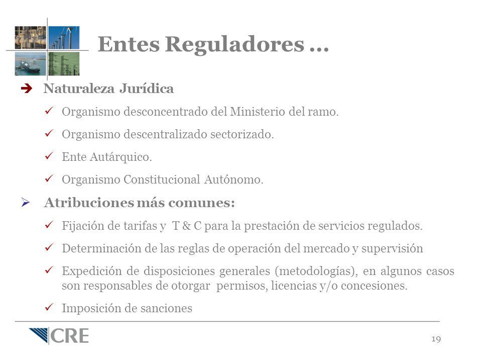 19 Naturaleza Jurídica Organismo desconcentrado del Ministerio del ramo.