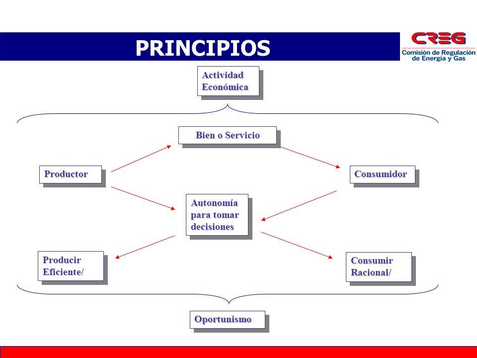 G4 ProductorProductor PRINCIPIOS Actividad Económica ConsumidorConsumidor Autonomía para tomar decisiones Consumir Racional/ Producir Eficiente/ OportunismoOportunismo Bien o Servicio Bien o Servicio