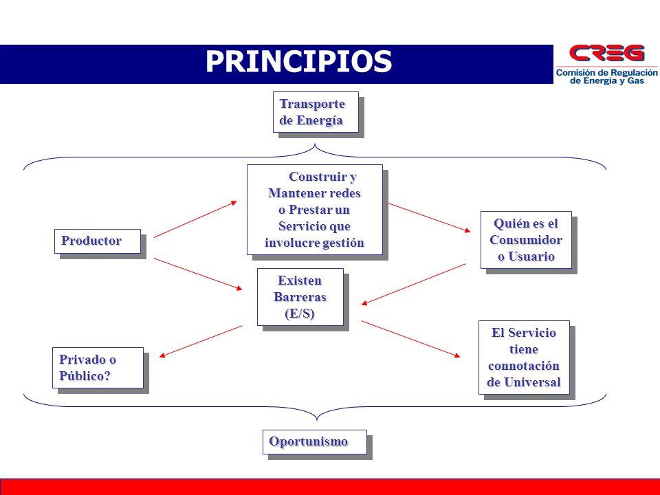 G4 ProductorProductor PRINCIPIOS Transporte de Energía Quién es el Consumidor o Usuario Existen Barreras (E/S) El Servicio tiene connotación de Universal Privado o Público.
