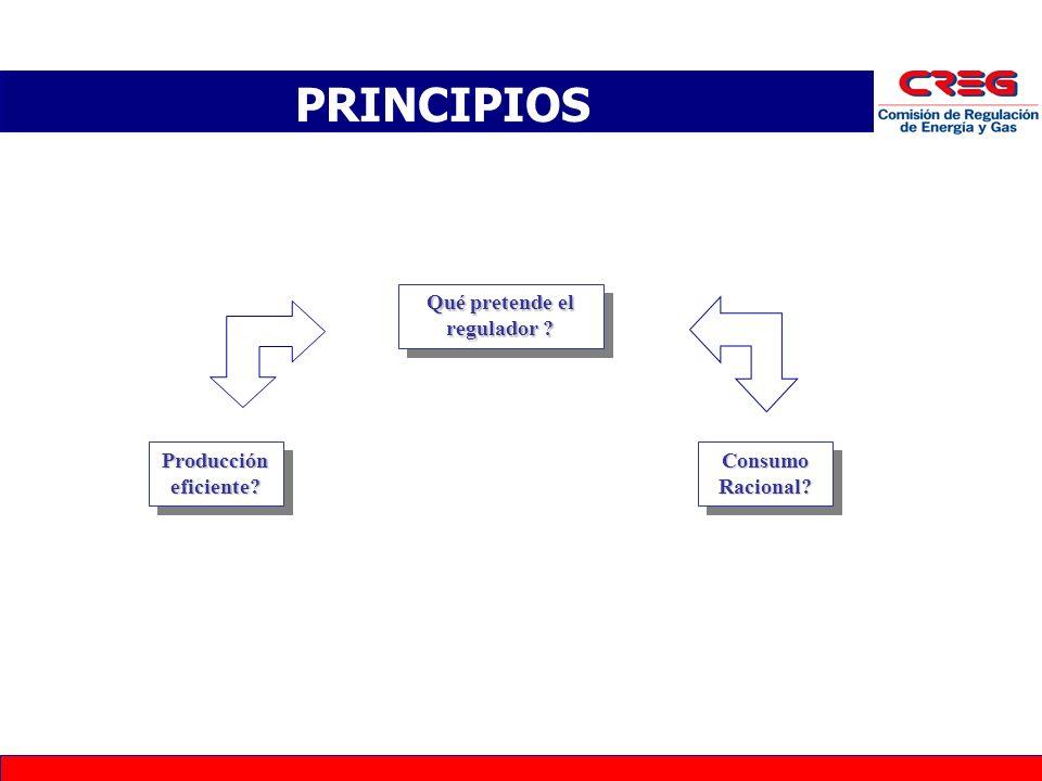 PRINCIPIOS Qué pretende el regulador ? Producción eficiente? Consumo Racional?