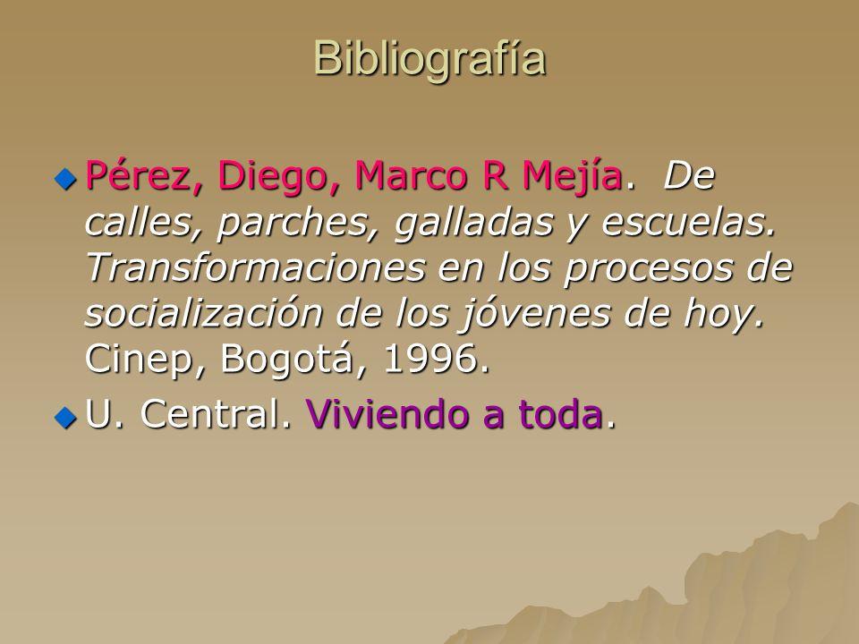 Bibliografía Pérez, Diego, Marco R Mejía. De calles, parches, galladas y escuelas. Transformaciones en los procesos de socialización de los jóvenes de