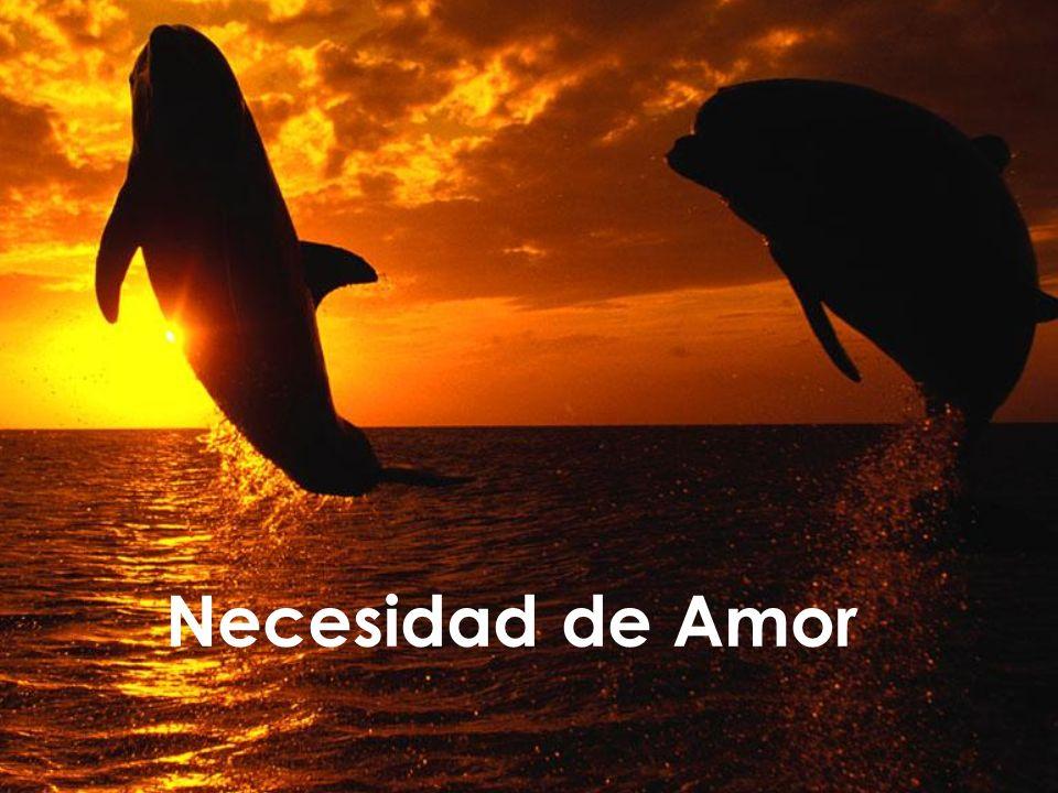 Iñaki Lascaray ilascaray@isie.es www.isie.es Necesidad de Amor