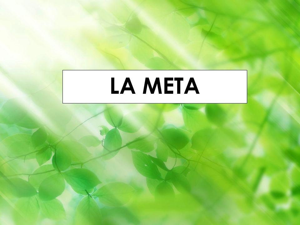 Godella (Valencia) 1-4 septiembre 2010 Iñaki Lascaray ilascaray@isie.es www.isie.es LA META