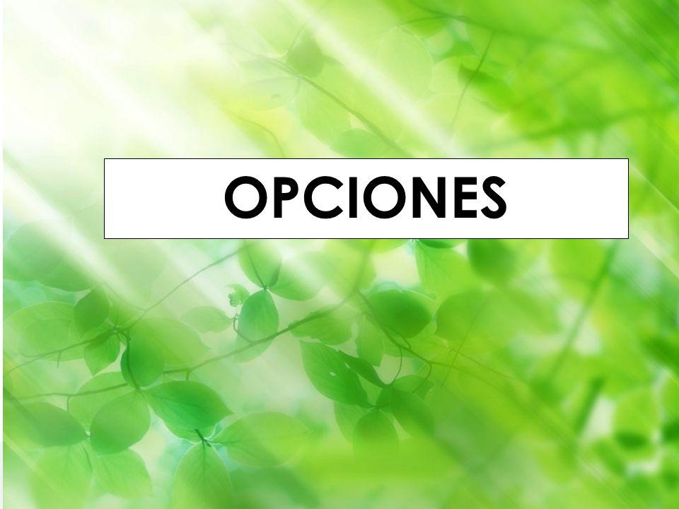 Godella (Valencia) 1-4 septiembre 2010 Iñaki Lascaray ilascaray@isie.es www.isie.es OPCIONES