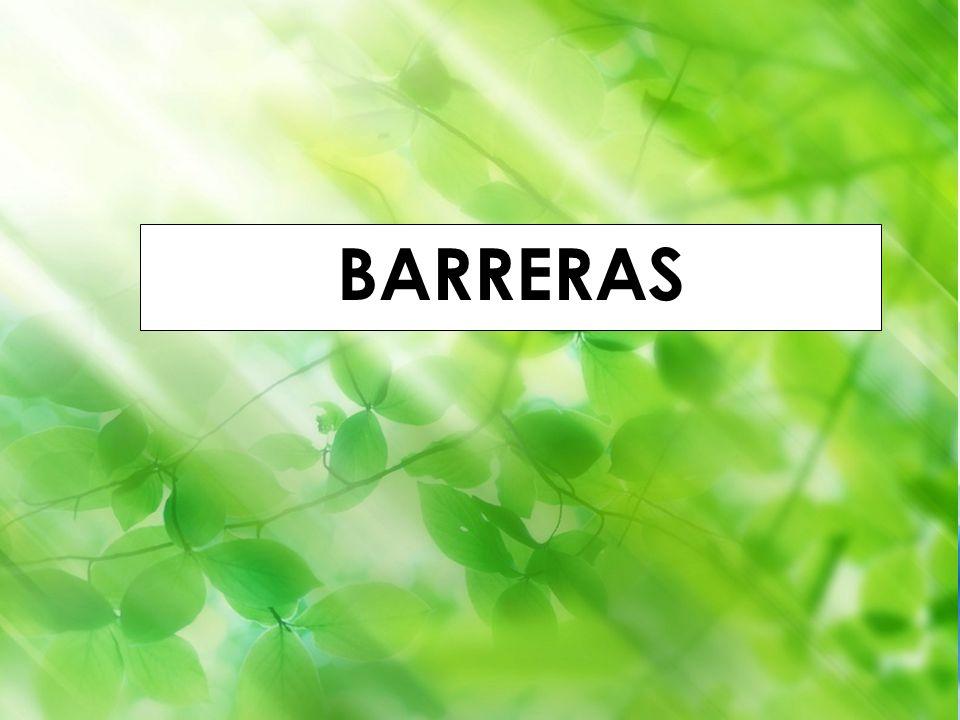 Godella (Valencia) 1-4 septiembre 2010 Iñaki Lascaray ilascaray@isie.es www.isie.es BARRERAS