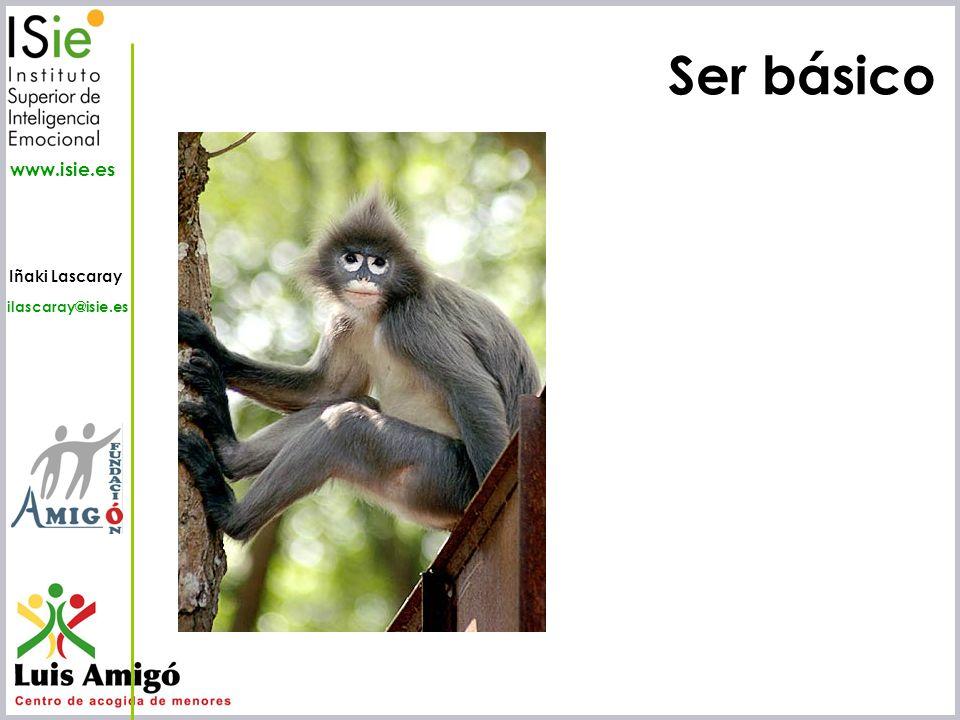 Iñaki Lascaray ilascaray@isie.es www.isie.es Ser básico