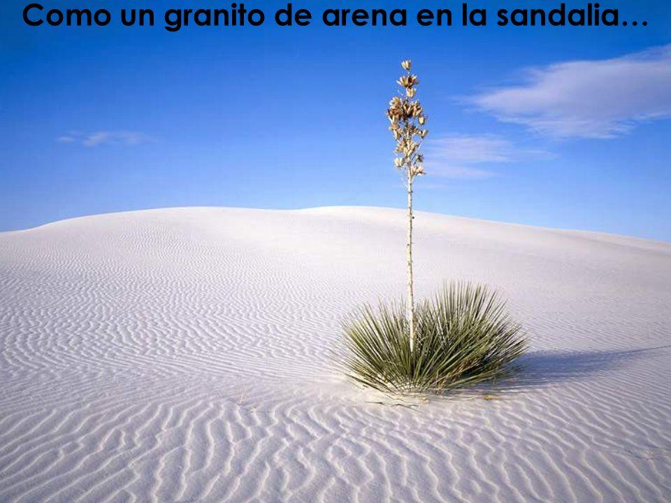 Iñaki Lascaray ilascaray@isie.es www.isie.es Ser básico (ilustración) Como un granito de arena en la sandalia…