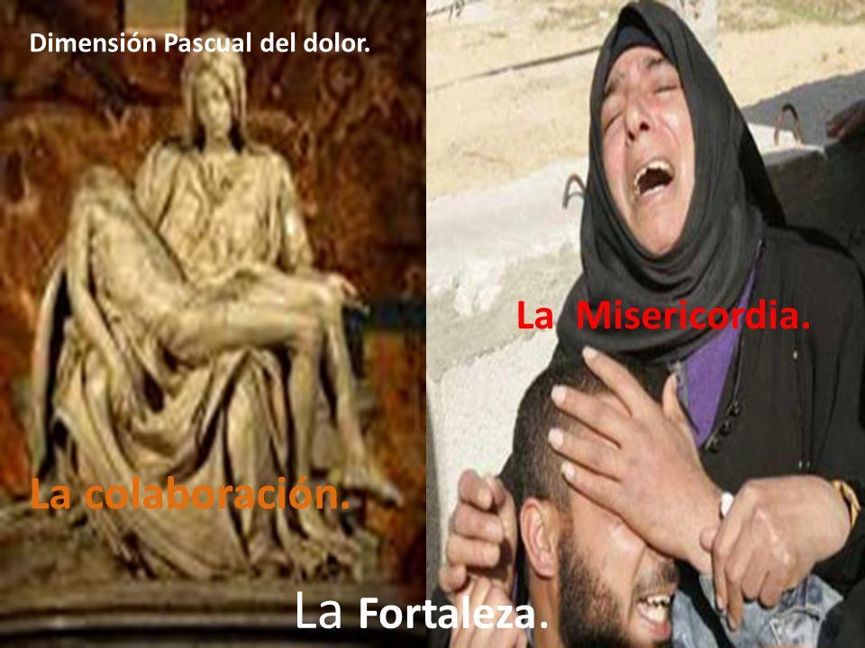Dimensión Pascual del dolor. La colaboración. La Misericordia. La Fortaleza.
