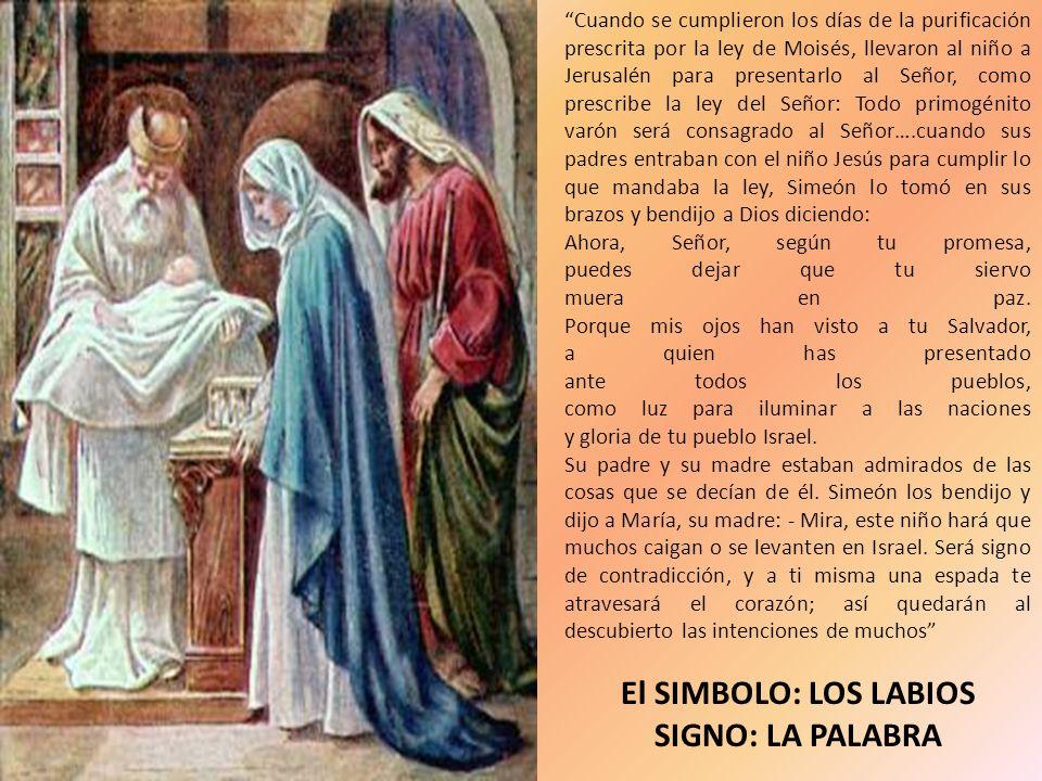 Cuando se cumplieron los días de la purificación prescrita por la ley de Moisés, llevaron al niño a Jerusalén para presentarlo al Señor, como prescrib