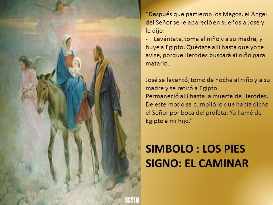 Después que partieron los Magos, el Ángel del Señor se le apareció en sueños a José y le dijo: - Levántate, toma al niño y a su madre, y huye a Egipto