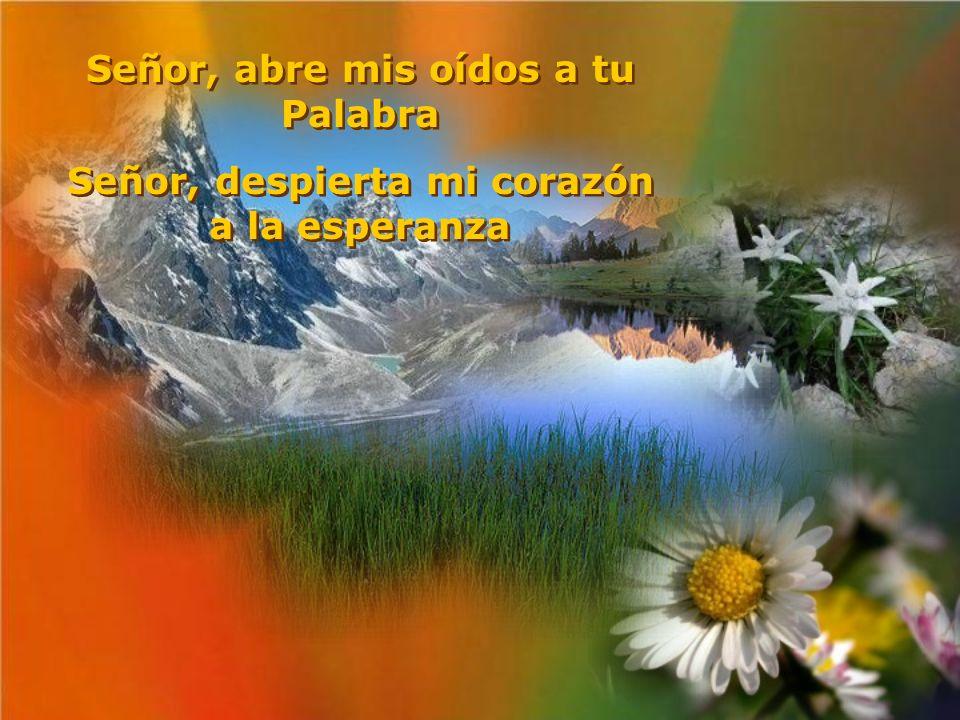 Señor, abre mis oídos a tu Palabra Señor, despierta mi corazón a la esperanza Señor, abre mis oídos a tu Palabra Señor, despierta mi corazón a la esperanza