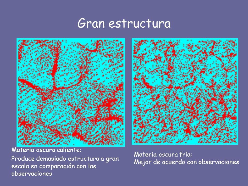 Gran estructura Materia oscura caliente: Produce demasiado estructura a gran escala en comparación con las observaciones Materia oscura fría: Mejor de