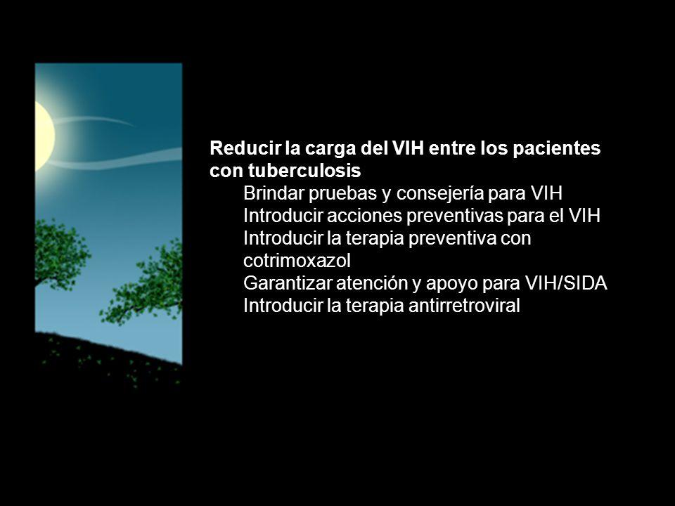 Reducir la carga del VIH entre los pacientes con tuberculosis Brindar pruebas y consejería para VIH Introducir acciones preventivas para el VIH Introducir la terapia preventiva con cotrimoxazol Garantizar atención y apoyo para VIH/SIDA Introducir la terapia antirretroviral