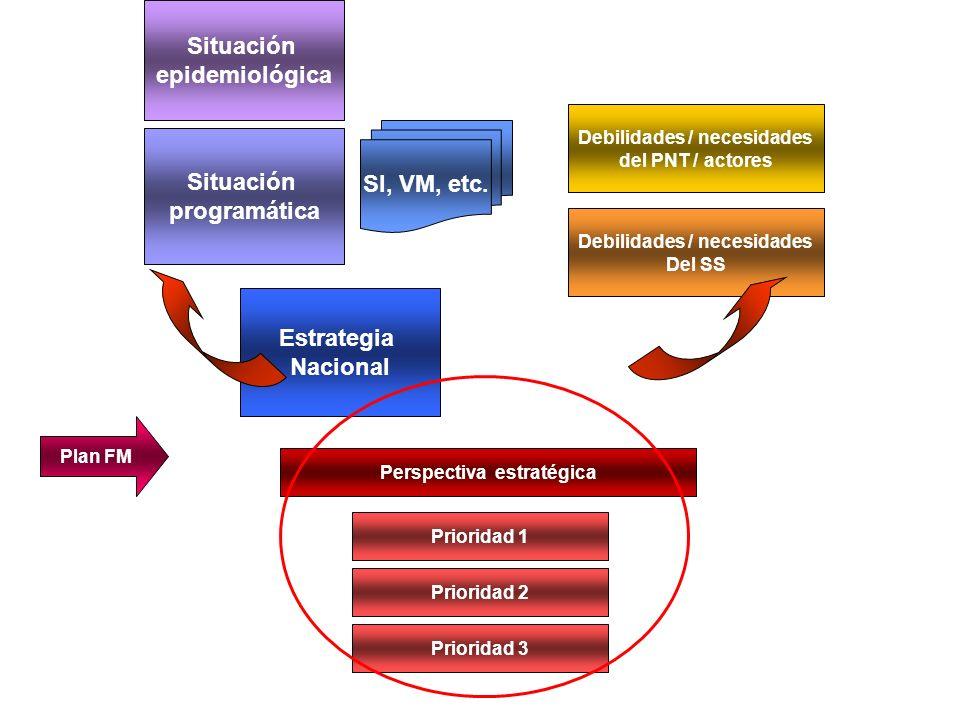 Prioridad 1 Prioridad 2 Prioridad 3 Perspectiva estratégica Objetivos APS Actividades Propósito Debilidades / necesidades del PNT Debilidades / necesidades Del SS