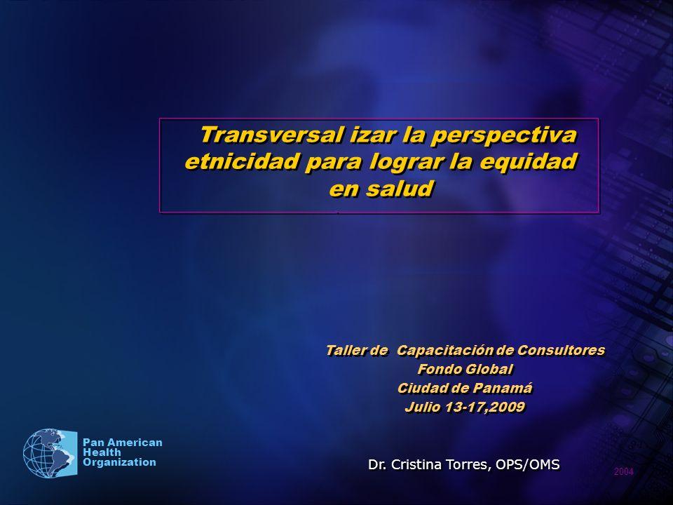 2004 Pan American Health Organization.... Transversal izar la perspectiva etnicidad para lograr la equidad en salud Taller de Capacitación de Consulto