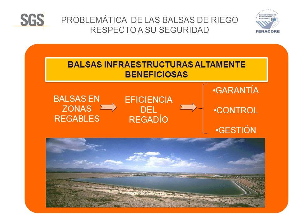 PROBLEMÁTICA DE LAS BALSAS DE RIEGO RESPECTO A SU SEGURIDAD GARANTÍA CONTROL GESTIÓN EFICIENCIA DEL REGADÍO BALSAS EN ZONAS REGABLES BALSAS INFRAESTRU