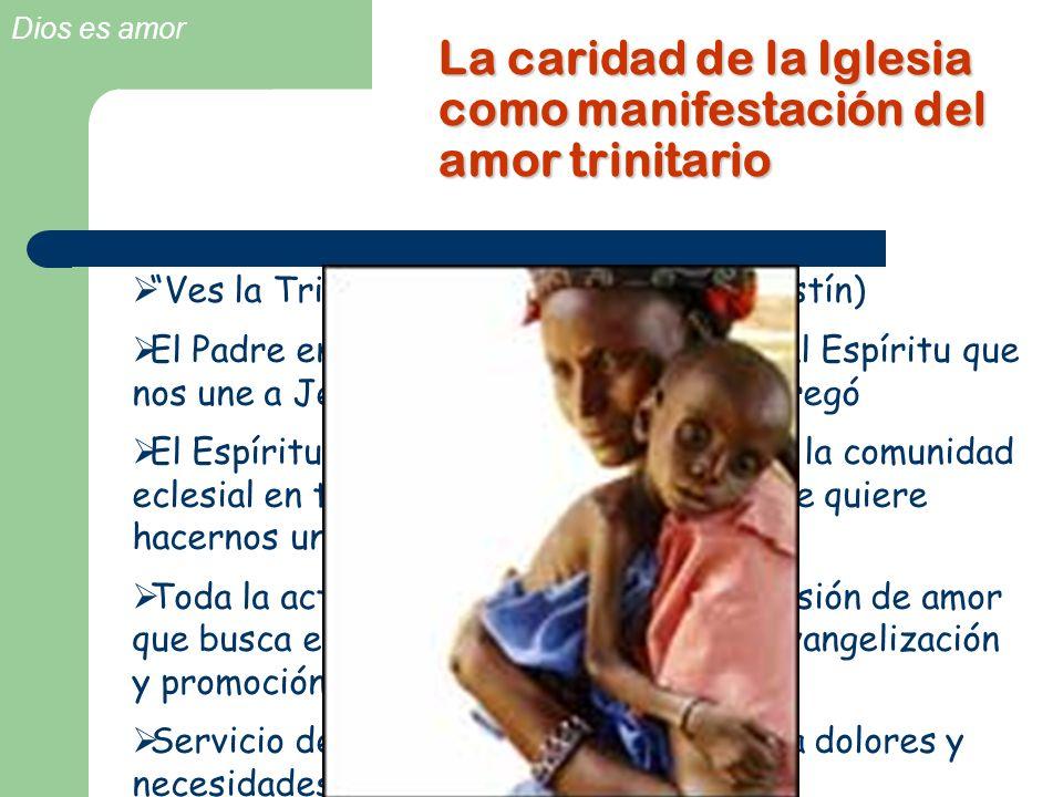 Dios es amor La caridad de la Iglesia como manifestación del amor trinitario Ves la Trinidad si ves el amor (S. Agustín) El Padre entrega al Hijo y És