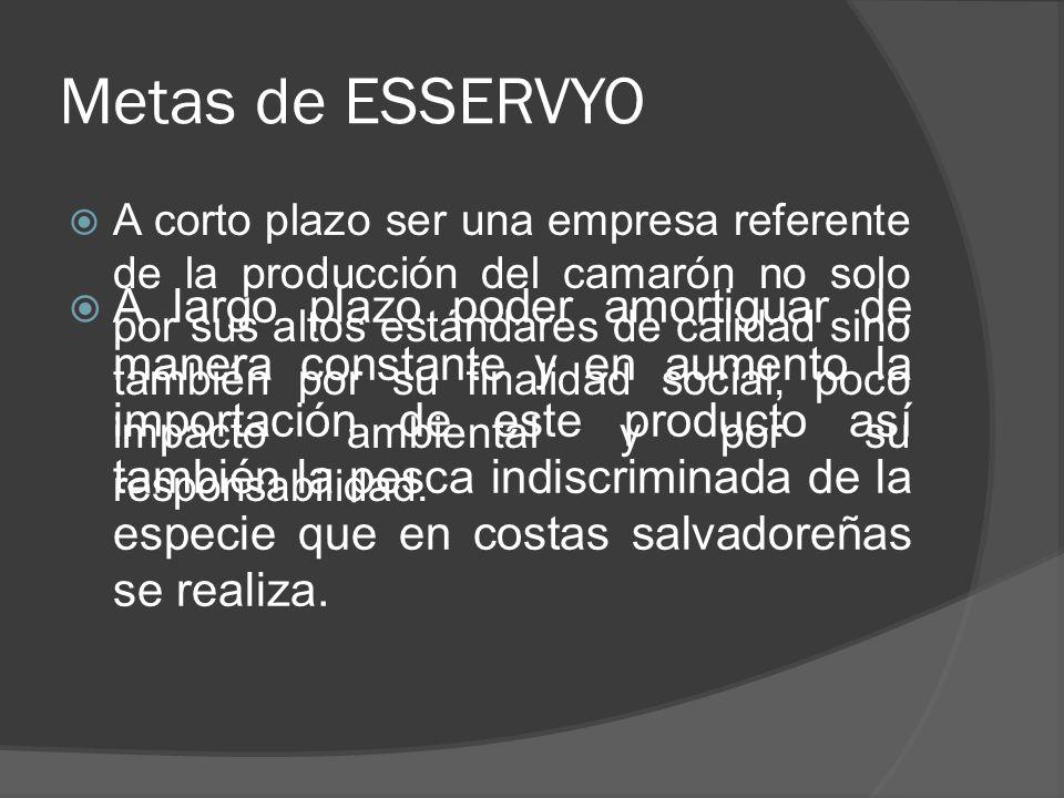 Metas de ESSERVYO A corto plazo ser una empresa referente de la producción del camarón no solo por sus altos estándares de calidad sino también por su